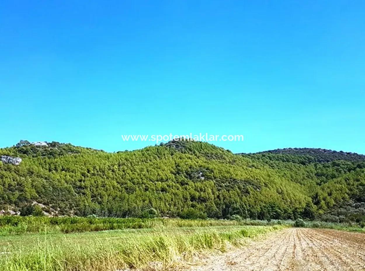 Mugla Ortaca Güzelyurt Fruchtbares Schnäppchenland Zum Verkauf