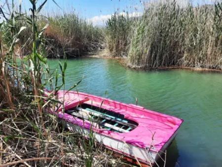 Muğla Dalyanda Satılık Kanala Sıfır Yatırıma Uygun Nar Bahçesi
