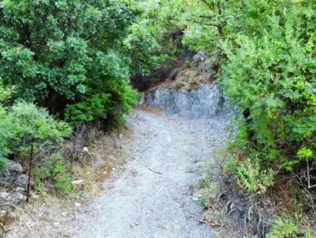 Muğla Ortaca Gökbelde Yatırıma Uygun 2512 M2 Kelepir Arazi Satılık