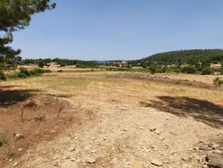 Muğla Menteşe Denizovada 1869 M2 Kelepir Tarla Satılık