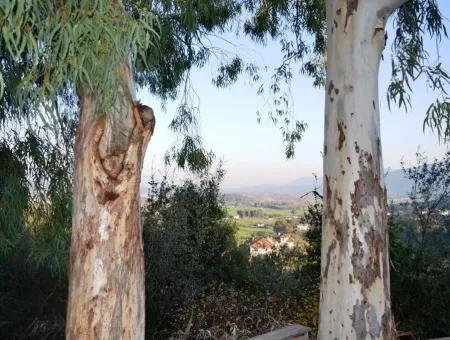 Ula Esentepede Satılık Kelepir Konut Arsası