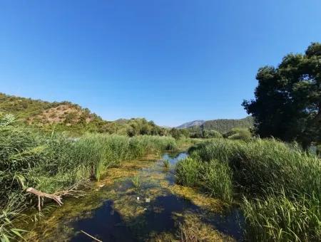 Göcek İnlice De Satılık Bağ Bahçe İmarlı Arazi